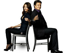 * CASTLE * Nathan Fillion & Stana Katic 8x10 Glossy Print