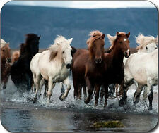 Wild Horses running Large Mousepad Mouse Pad Great Gift Idea