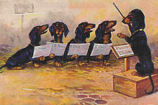 Dachshund Dog Choris (Early 1900's) LARGE New Blank Note Cards