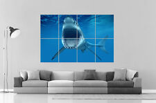 GREAT WHITE SHARK REQUIN JAWS Wall Art Poster Grand format A0 Large Print
