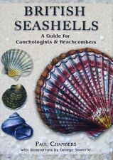BOEK/LIVRE/BOOK : BRITISH SEASCHELLS (engelse schelpen,coquillage britannique