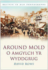 Rowe-Around Mold  BOOK NEW