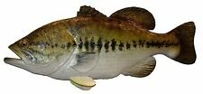 Chainsaw Carving Largemouth Bass Hand Carved Crappie Bluegill Smallmouth 172