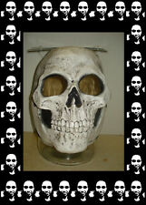 HALLOWEEN HORROR SKULL MASK PARTY LAYTEX LOVER ZOMBIE