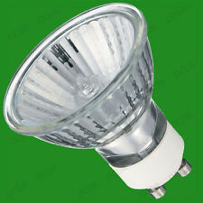10x GU10 50W Halogen Reflector Bulbs with UV Protection