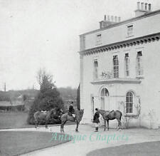 Tor Newton House South Devon Hunt History Of 1911 3 Page Photo Article 9841