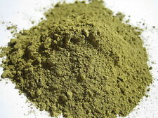 1 LB - FRESH CHACRUNA (Psychotria viridis) Dried Leaf Powder 100% ORGANIC