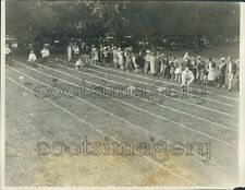 1926 Whippet Dog Derby 1920s Prides Crossing Massachusetts Press Photo