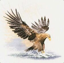 Heritage Stitchcraft EAGLE IN FLIGHT Cross Stitch Chart Only by John Clayton