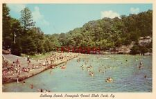 BATHING BEACH AND LAKE, PENNYRILE FOREST STATE PARK, KENTUCKY