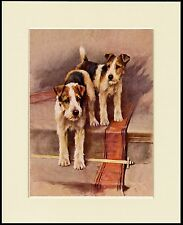 WIRE FOX TERRIER DOGS ON THE STAIRS LOVELY DOG PRINT MOUNTED READY TO FRAME