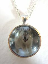 Grey Wolf Design Silver Pendant Glass Necklace New in Gift Bag