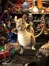 Pack Rat Puppet with Moveable Mouth, Arms,  Backpack, Folkmanis MPN 2847, 3 & Up