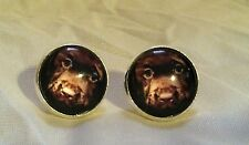 ADORABLE Brown LABRADOR RETRIEVER PUPPY Glass Dome & Silver Color POST EARRINGS!