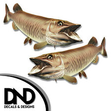 "Tiger Musky - Fish Decal Fishing Tackle Box Bumper Sticker ""5in SET"" F-0900 D&"