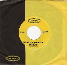 Donovan-There Is A Mountain (VG+)