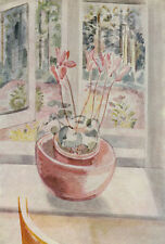 Cyclamen in a Window,  RARE Paul Nash vintage print 1948. BEAUTIFUL