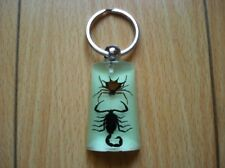 Real Spiny Spiner & Black Scorpion Keychain