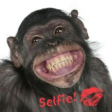 """Birthday Blank Card """"Cheeky Monkey Selfie"""" and Free fast postage!"""