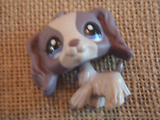 The Littlest Pet Shop #1209 Gray Cocker Spaniel Dog Blue Eyes Flower on Ear