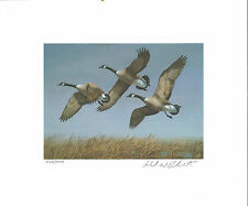 NORTH DAKOTA  #1 1982 STATE DUCK STAMP PRINT CANADA GEESE by Richard Plasschaert