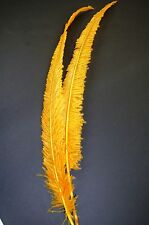 "Ostrich NANDU Trimmed FEATHERS 18""-23"" Quality PLUMES 10+ Colors To Choose From"