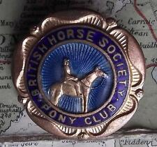 Vintage Gilded British Horse Society Enamel Brooch Badge by Lewis