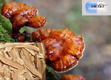 100g premium ling zhi  Reishi Ganoderma Lucidum Mushroom dry herbs