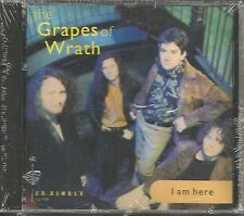 Ginger GRAPES OF WRATH I am Here 2 UNRELEASED & 2 MIXES CD single PINK FLOYD trk
