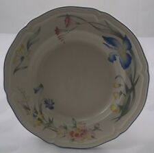 Villeroy & and Boch RIVIERA rimmed soup / dessert bowl / deep plate 23cm used