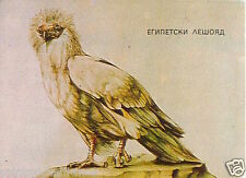 CALENDRIER POCKET CALENDAR BULGARIA 1985 Egyptian vulture Egypt Percnoptère