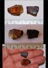 lot de 2 Burmite brut de Birmanie 9,70 ct/  / ambre fossile Birman / amber