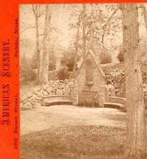 J.W.& J.S.Moulton stereoview Drinking Fountain, Swan Lake,Druid Hill Park,Bal.MD