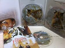 Guy Pearce TWO BROTHERS ~ 2004 Tiger Adventure ~ 2-Disc French DVD w/ Slipcover