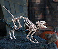 SPOOKY Plastic Halloween Skeleton Cat Halloween Haunted House Party DECORATION