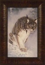 INTENSE PREYER - LYNX by Ray Whitson 11x15 FRAMED PRINT PICTURE Bobcat Cat