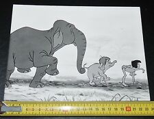 PHOTO CINEMA 1967 LE LIVRE DE LA JUNGLE WALT DISNEY KIPLING MOWGLI DESSIN ANIME