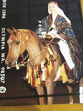 Traditional old style Arabian show horse native costume