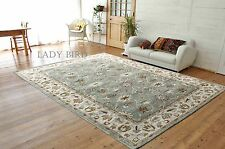 Brand New Ambrose 5 x 8 Traditional Persian Oriental Handmade Wool Rug & Carpet