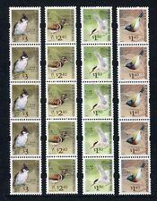 Hong Kong 2006 aves birds uccelli Gien 1403-06 5er-rayas con nº ** mnh