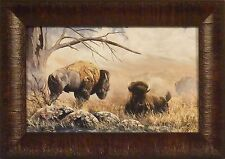 HIGH PLAINS DRIFTER by Ray Whitson Buffalo Bison 11x15 FRAMED PRINT PICTURE
