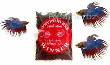 Super Premium Betta Food 10g -Mosquito Larvae for Tropical Fishes Buy 3 , 1 Free