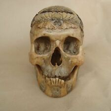 Hand Resin Replica 1:1 Kapala Carved Human Skull Tibetan Buddhism Fish Tai Chi