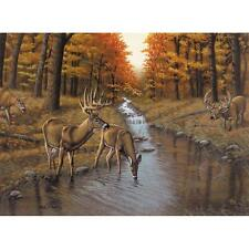 "SYMOND'S CREEK Paint By Number Kit 15.75"" x 11.25"" Deer"