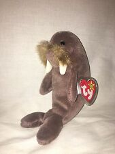 1996 Jolly the Walrus Ty Beanie Baby in Mint Condition!