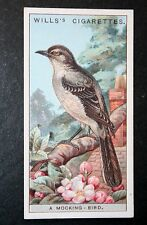 Northern Mockingbird    Vintage Colour Card # VGC