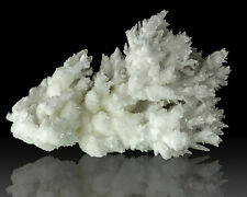 "5.8"" Spiky Branching White ARAGONITE Crystals Fluoresces Green Mexico for sale"
