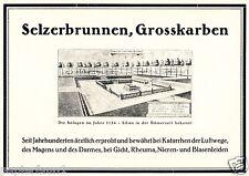 Selzerbrunnen Grosskarben Karben Orig. Reklame 1927 Quelle Heilwasser Heilquelle