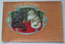 OUR KITTIES Cigar Box Label Two Long Haired Cats/Kittens