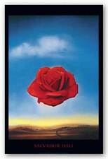 ART POSTER The Rose Salvador Dali